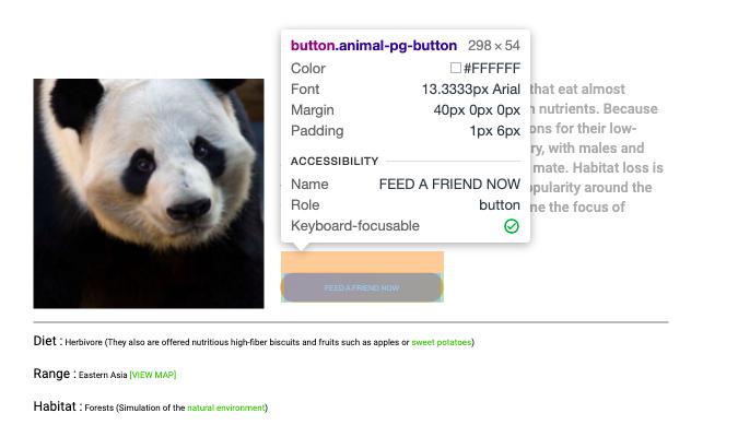 Информация о выбранном HTML-элементе